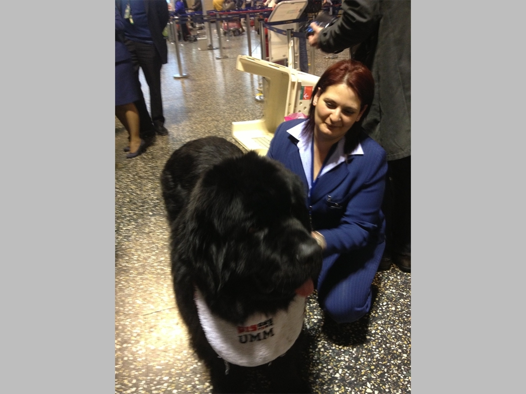 Attendant friend at Milan airport
