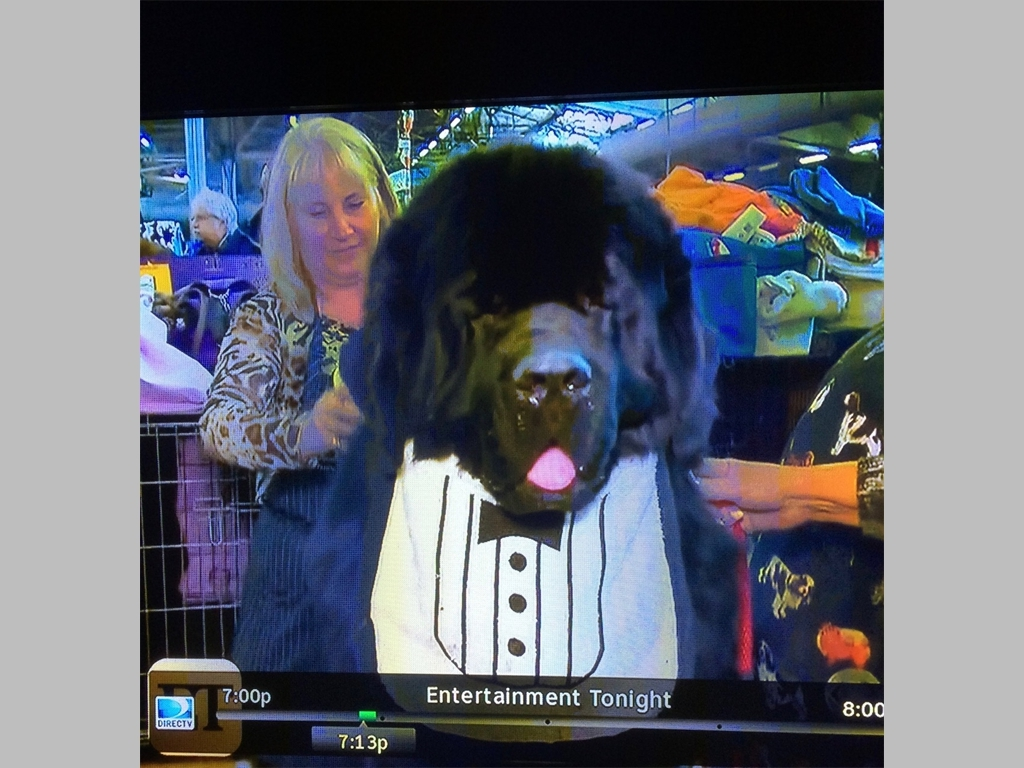 I was on Entertainment Tonight! Everybody saw me on TV!